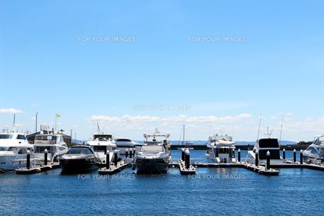 スタイリッシュなクルーザーが係留されたマリーナのラグジュアリーな夏の景色の写真素材 [FYI01184940]