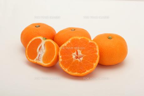 みかん,マンダリンオレンジの写真素材 [FYI01185081]