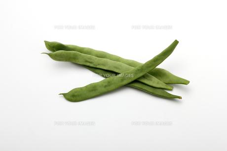 モロッコインゲンの写真素材 [FYI01185090]