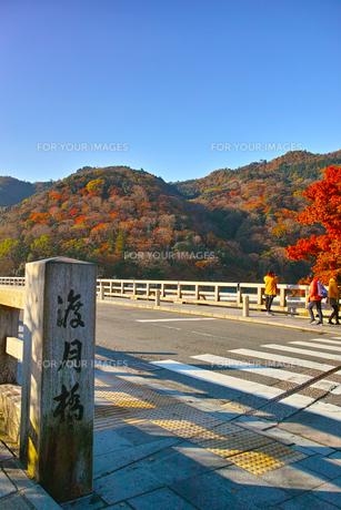 紅葉シーズンの渡月橋の写真素材 [FYI01185201]