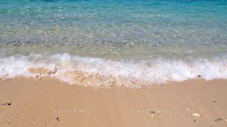 沖縄の海 波打ち際(ゴリラチョップ)の写真素材 [FYI01185504]