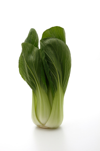 チンゲン菜,ちんげんさいの写真素材 [FYI01185507]