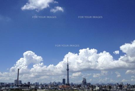 雲の写真素材 [FYI01185949]