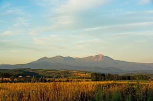 夕日を浴びる大雪山の写真素材 [FYI01186000]