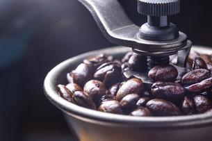 珈琲、コーヒー豆の写真素材 [FYI01186219]