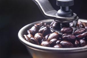 珈琲、コーヒー豆の写真素材 [FYI01186220]