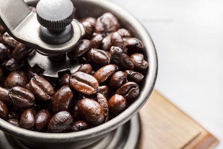 珈琲、コーヒー豆の写真素材 [FYI01186222]