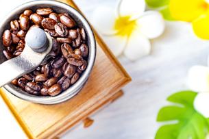 珈琲、コーヒー豆、プルメリアの写真素材 [FYI01186225]