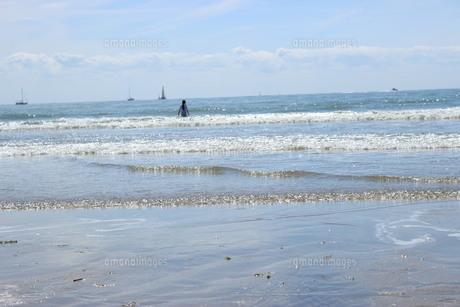 キラキラ光る海の少女の写真素材 [FYI01186402]