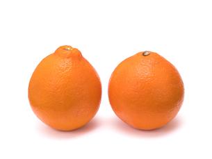 オレンジ ミネオラの写真素材 [FYI01186958]