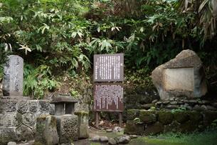 会津若松の町並み(会津飯盛山)の写真素材 [FYI01187105]