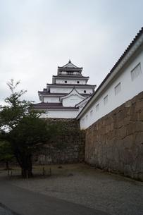 会津若松の町並み(会津鶴ヶ城)の写真素材 [FYI01187126]