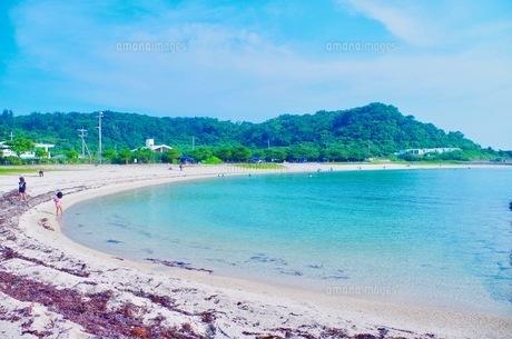 夏の晴れた日の海辺の写真素材 [FYI01187565]