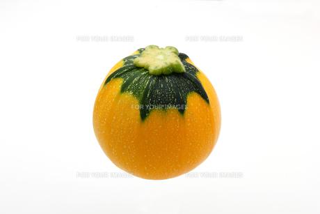 白い背景に丸い黄色のズッキーニの写真素材 [FYI01187681]