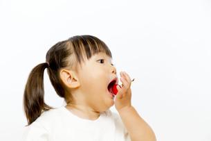 サクランボを食べる幼い女の子の横顔の写真素材 [FYI01187755]