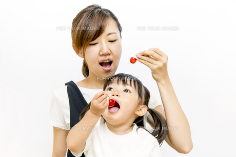 サクランボをお母さんと一緒に食べる幼い女の子の写真素材 [FYI01187758]