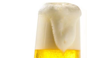 生ビールの写真素材 [FYI01188161]