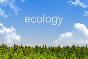 エコロジーメッセージの写真素材 [FYI01188239]