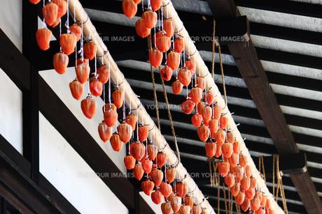 古民家の軒先の干し柿の写真素材 [FYI01188325]