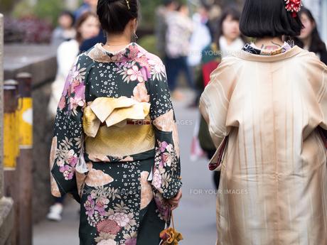 着物姿の女性の写真素材 [FYI01188415]