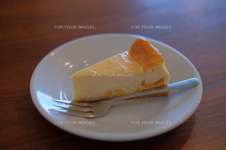 フルーツチーズケーキの写真素材 [FYI01188431]