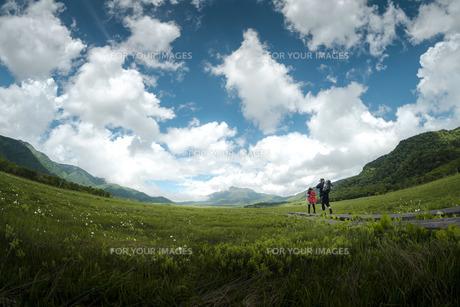 草原の旅の写真素材 [FYI01188619]