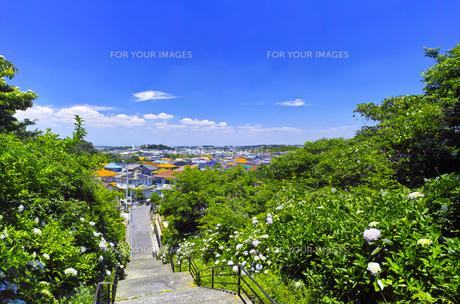 紫陽花の咲く郊外の住宅街の写真素材 [FYI01188819]