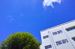 新緑と校舎のイメージの写真素材 [FYI01188820]