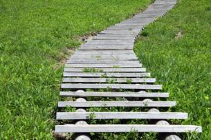 階段の写真素材 [FYI01188868]