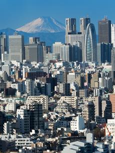 新宿高層ビル街と富士山の写真素材 [FYI01189044]