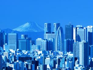 新宿高層ビル街と富士山の写真素材 [FYI01189045]