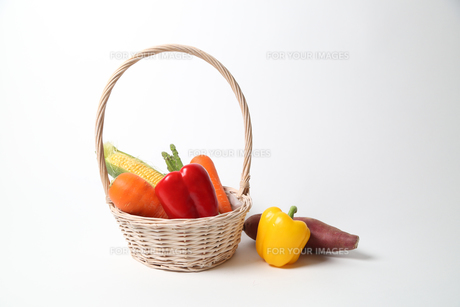 野菜集合の写真素材 [FYI01189319]