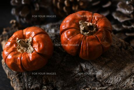 ハロウィンをイメージしたカボチャのデコレーションの写真素材 [FYI01189482]