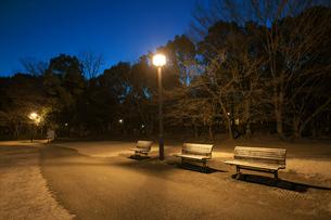早朝の無人の公園のベンチの写真素材 [FYI01189724]