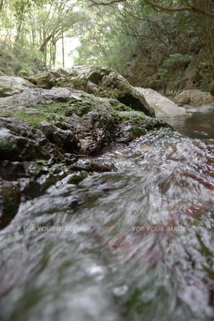 川の写真素材 [FYI01189924]