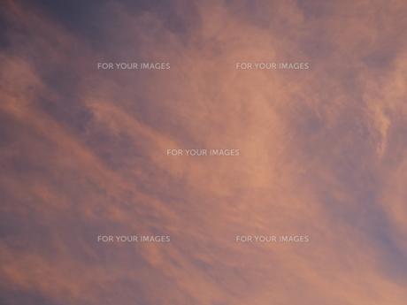 夜明け前の抽象画のような色合いの空の写真素材 [FYI01190482]