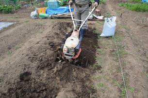 ミニ耕運機で畑の土づくり / 家庭菜園の写真素材 [FYI01190501]