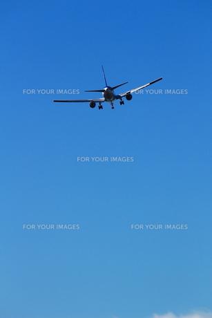 青空を飛ぶ飛行機の後ろ姿の写真素材 [FYI01190630]