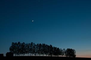 夕暮れの丘と三日月の写真素材 [FYI01190935]