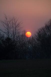 夕陽の写真素材 [FYI01190938]