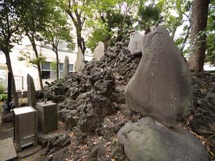 富士塚 保木間富士の写真素材 [FYI01190985]