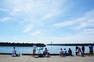 釣り・ファミリーフィッシング / 真夏の波止場の写真素材 [FYI01191008]