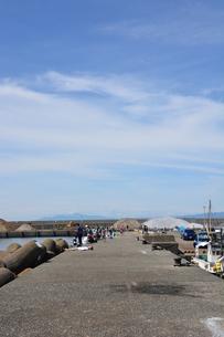 釣り・ファミリーフィッシング / 真夏の波止場の写真素材 [FYI01191012]