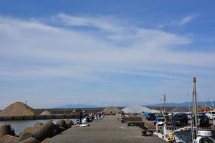 釣り・ファミリーフィッシング / 真夏の波止場の写真素材 [FYI01191013]
