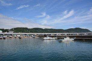 釣り・ファミリーフィッシング / 真夏の波止場の写真素材 [FYI01191014]