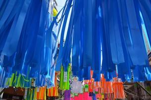 湘南ひらつか七夕まつり / 関東三大七夕祭りの写真素材 [FYI01191122]