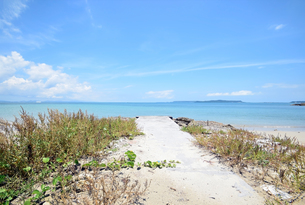 沖縄・うるま市照間ビーチの写真素材 [FYI01191413]
