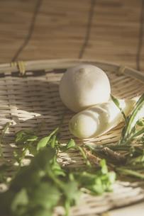 春の七草の写真素材 [FYI01191440]