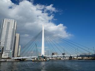 隅田川 中央大橋の写真素材 [FYI01191715]