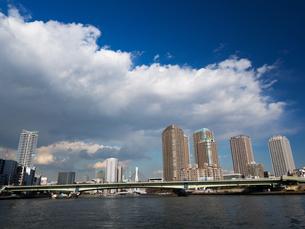 隅田川 佃大橋の写真素材 [FYI01191717]